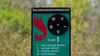 Berlin & Brandenburg:Waldbrandgefahr steigt: Experte setzt auf Weltraumtechnik - n-tv NACHRICHTEN