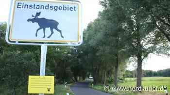 Das wohl erste Elch-Schild in Brandenburg - Nordkurier