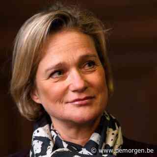 Delphine Boël: 'De adviseurs van het hof wilden dat ik verdween'
