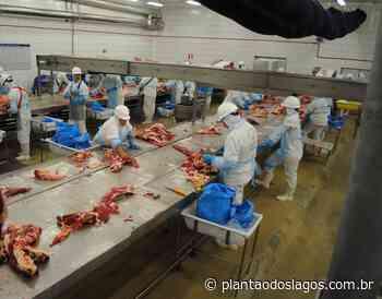 Frigorífico na Bélgica confirma 67 casos de Covid-19 - Plantão dos Lagos
