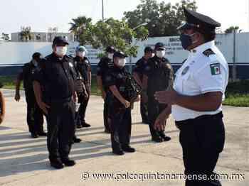 Disminuyen quejas contra la actuación policíaca en Playa del Carmen - Palco Quintanarroense
