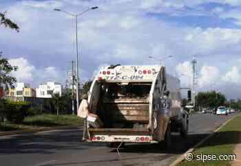Playa del Carmen: Registran más de 300 toneladas de generación de basura en Solidaridad - sipse.com