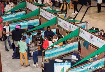Playa del Carmen: Confirman Expo Turismo Sustentable de manera virtual - sipse.com