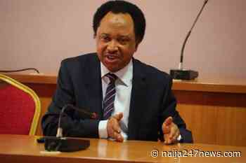 Kaduna attacks: Sen Sani urges concerted efforts by govt, security agencies - Naija247news