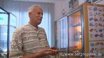 Rund 10.000 Miniaturmodelle: Ein Besuch beim Auto-Sammler in Salzhemmendorf - Sat.1 Regional