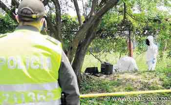 Investigan la muerte de una mujer en el municipio de Zarzal, Valle - El País