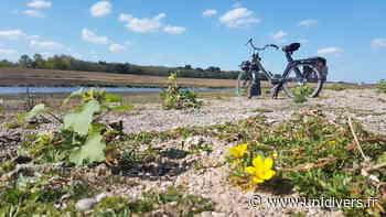 Balade à Solex et pique-nique à Châteauneuf-sur-Loire CHECY Chécy - Unidivers