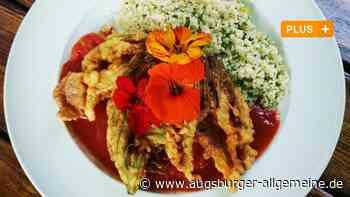 Serie Sommerküche: Was man aus Zucchiniblüten kochen kann - Augsburger Allgemeine