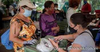 Zulia con 78 nuevos casos de covid-19 y el país suma 548 contagios más - Panorama.com.ve