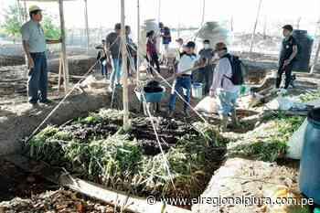 Sullana: instalarán biohuertos familiares para producción de hortalizas en distrito de Querecotillo - El Regional