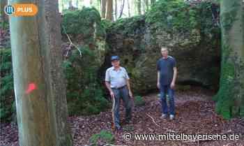Unheimliche Bewohner in Ambergs Wäldern - Mittelbayerische