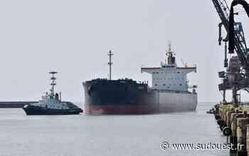 La Rochelle : record d'exportation historique pour le Grand Port maritime - Sud Ouest