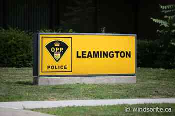 Leamington Woman Charged In Multiple Property Thefts - windsoriteDOTca News