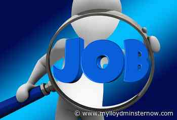 Lloydminster unemployment rates drop in Saskatchewan, rise in Alberta - My Lloydminster Now