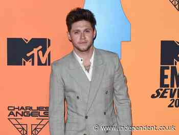 Niall Horan urges fans not to say 'whatever they want' to celebrities online: 'We are normal people' - The Independent