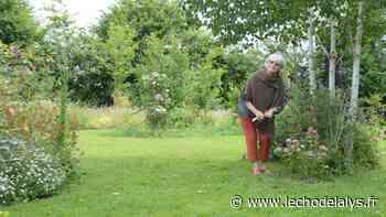 Un jardin à découvrir au cœur d'Aire-sur-la-Lys - L'Écho de la Lys