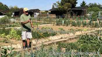 La chaleur contrarie le travail du jardinier à Saint-Quentin - Courrier picard