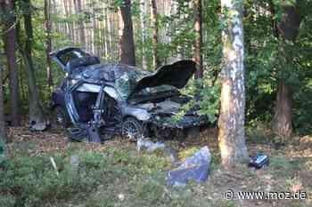 Auffahrt zur A11: Tödlicher Verkehrsunfall auf der B273 bei Wandlitz - Auto wird in den Wald geschleudert - Märkische Onlinezeitung