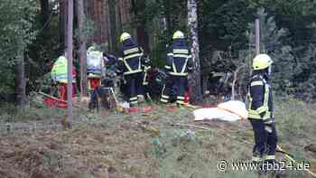 Autofahrer prallt bei Wandlitz gegen Bäume und stirbt - rbb24