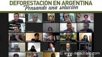 Livio Gutiérrez disertó sobre la situación de los desmontes en el Chaco - Datachaco.com
