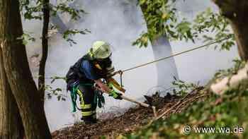 Dortmund (NRW): Waldbrand an der Hohensyburg - Einsatz unter schweren Bedingungen - wa.de