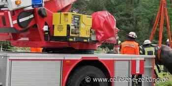 Tierrettung in Celle: Freiwillige Feuerwehr befreit Pferd aus Graben - Cellesche Zeitung