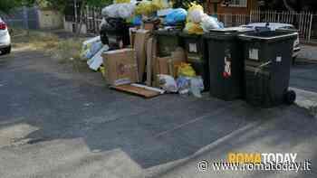 SEGNALAZIONE - Mancata raccolta dei rifiuti porta a porta. Ritirano solo l'umido