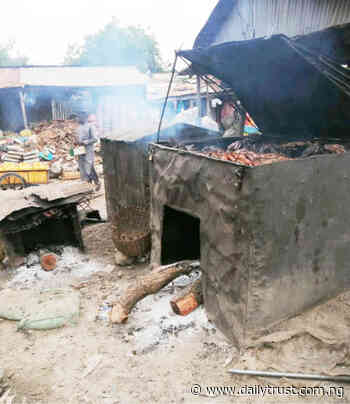 '62-yr-old Minna fish market generates over N200m annually' - Daily Trust
