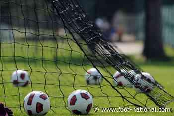 Le Puy-Bourg-en-Bresse Peronnas : Le match est annulé ! - Foot National