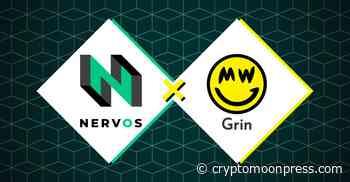 Grin Community Proceeds to Integrate Mimblewimble and Nervos - CryptoMoonPress