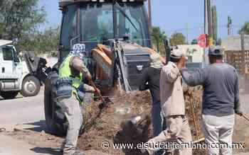 Realizan jornada de limpieza en 2 parques públicos de La Paz - El Sudcaliforniano