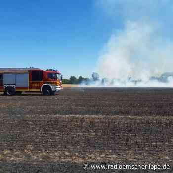 Stadt Gelsenkirchen warnt vor Brandgefahr - Radio Emscher Lippe
