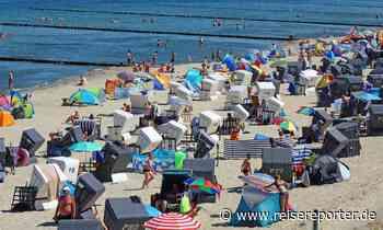 Urlaub an Nord- und Ostsee: Strände voll – was Reisende wissen müssen - Reisereporter