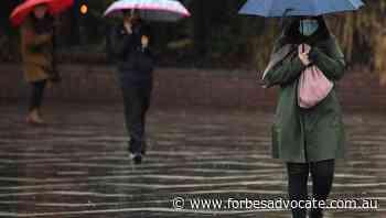 Flooding, evacuation for NSW south coast - Forbes Advocate