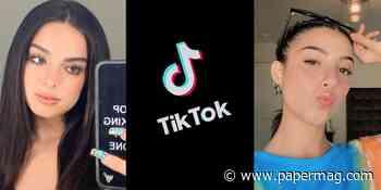 New Forbes List Reveals TikTok's Highest-Earning Stars - Papermag