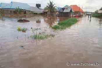 Flood: 2 killed, properties destroyed in Kauran Namoda, Zamfara - TVC News