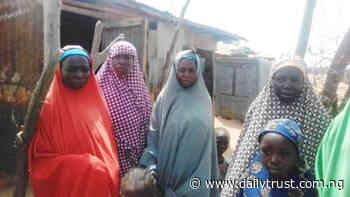 How Zamfara women widowed by bandits struggle for survival - Daily Trust