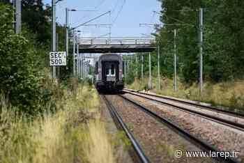 Une femme happée par un train à hauteur de Gien ce samedi matin - Gien (45500) - La République du Centre