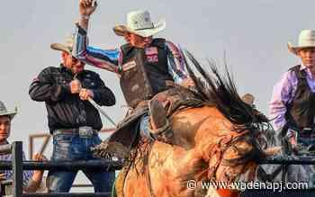 Ticket sales move online for Wojo Rodeo - Wadena Pioneer Journal