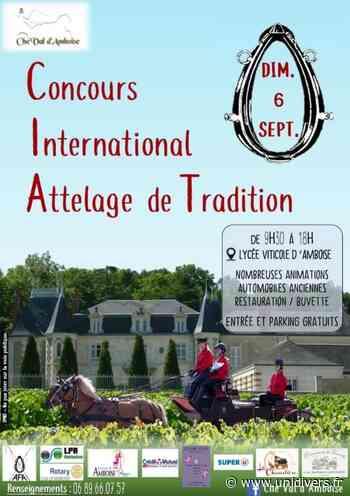 Concours International Attelage de Tradition Lycée viticole d'Amboise dimanche 6 septembre 2020 - Unidivers