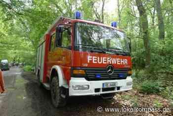 2000 qm Kiefernwald nahe der Sythener Straße brannten: Waldbrand in Haltern schnell gelöscht - Haltern - Lokalkompass.de