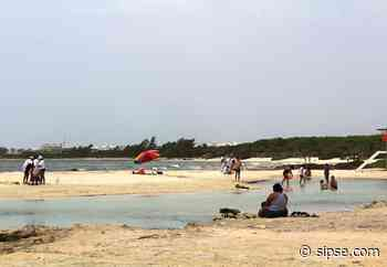 Nueva normalidad: reabren playas el próximo 20 de agosto - sipse.com