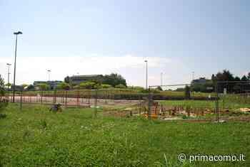 Fine agosto di festa al Parco dei Vivai di Mariano Comense - Prima Como