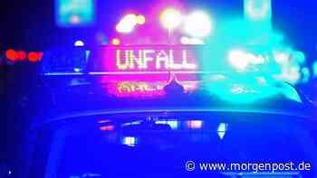 Potsdam: Baum fällt auf Auto - 22-Jähriger stirbt - Berliner Morgenpost