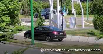 Driver rolls through park path in Burnaby (VIDEO) - Vancouver Is Awesome