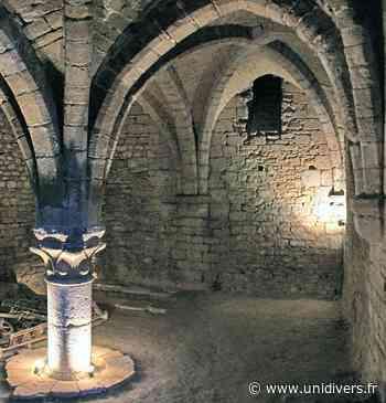 Visite commentée des vestiges du prieuré bénédictin Prieuré Maule - Unidivers