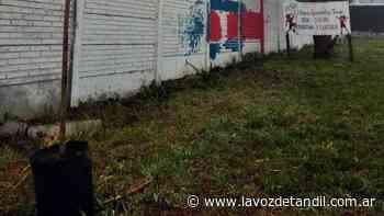 Crean un jardín en la sede de la peña de San Lorenzo - La Voz de Tandil