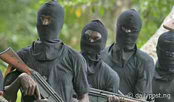 Robbers dressed as vigilantes attack Yola community - Daily Post Nigeria