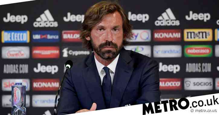 Manchester United star Paul Pogba would be 'ideal gift' for Andrea Pirlo at Juventus, says Luca Toni