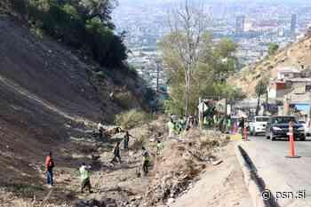 Remueven toneladas de basura en la colonia Anexa Buena Vista - Primer Sistema de Noticias